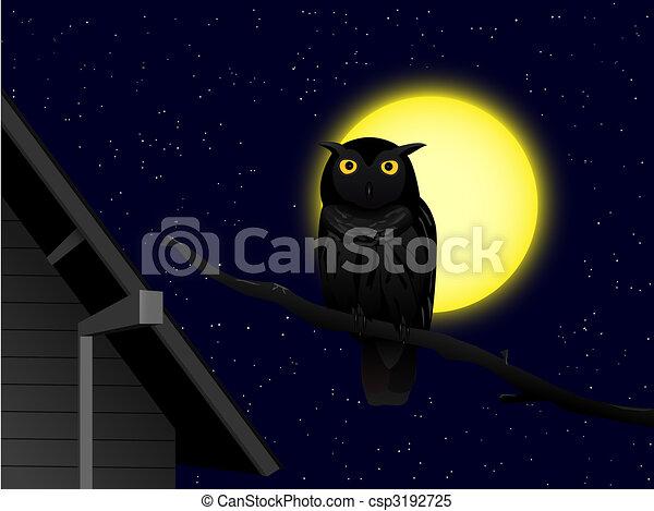 owl in the night - csp3192725