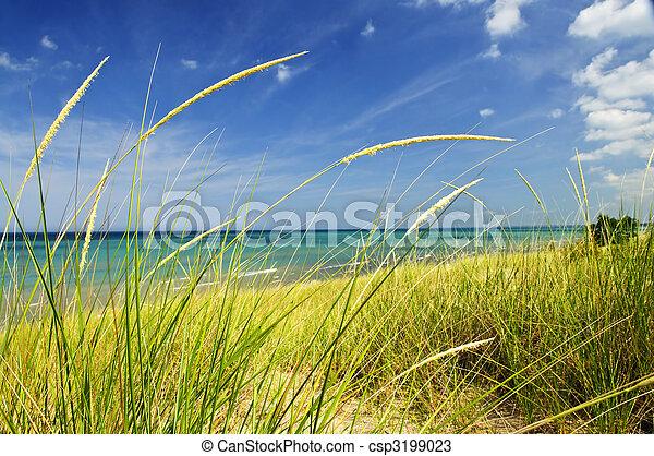 Sand dunes at beach - csp3199023
