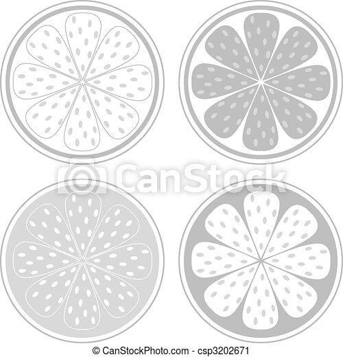 Citrus fruit slices isolated on white background - csp3202671