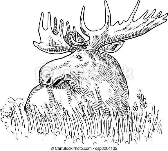 Antler Stencil furthermore Arrowhead 006 likewise Hoofd Slang 8893536 in addition Deer Coloring Pages besides Howtodraw Deer Tutorials. on elk head clip art
