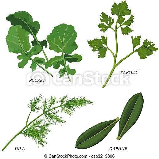 Herbs - csp3213806