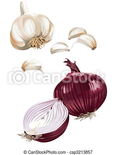 Onion and garlic - csp3213857