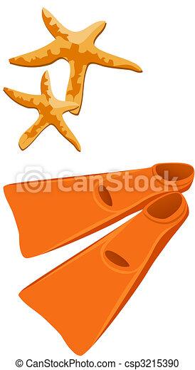 Fins and Starfish - csp3215390