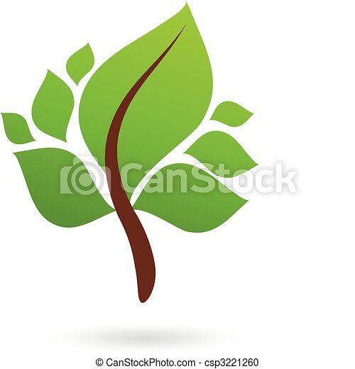 A branch with green leaves - csp3221260