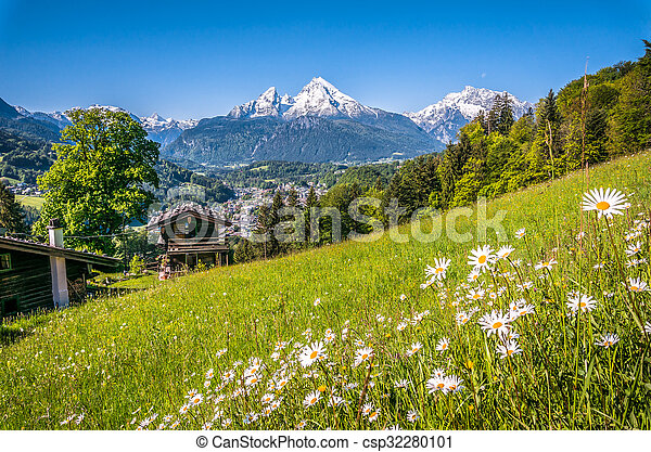 Bavarian Alps with beautiful flowers and Watzmann in springtime, Germany - csp32280101