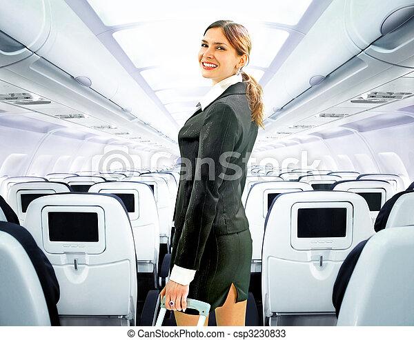 flight attendant - csp3230833