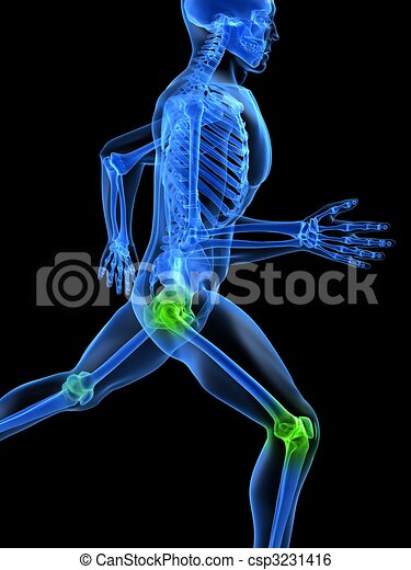 healthy joints  - csp3231416
