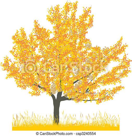 Cherry tree in autumn - csp3240554