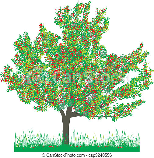 Cherry tree in summer - csp3240556
