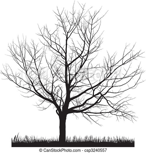 Cherry tree in winter - csp3240557