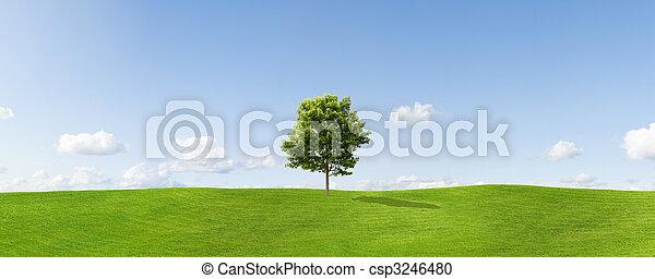 Panorama - csp3246480
