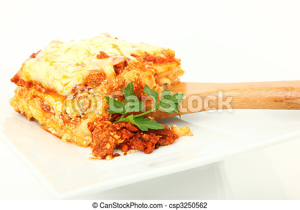 Lasagna Portion on Serving Spoon - csp3250562