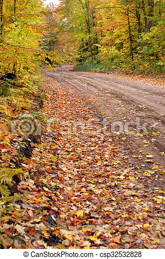 Narrow road disappears into Autumn foliage on Tunnel Road near Houghton, Michigan. Leaves cover road with gold and yellow.