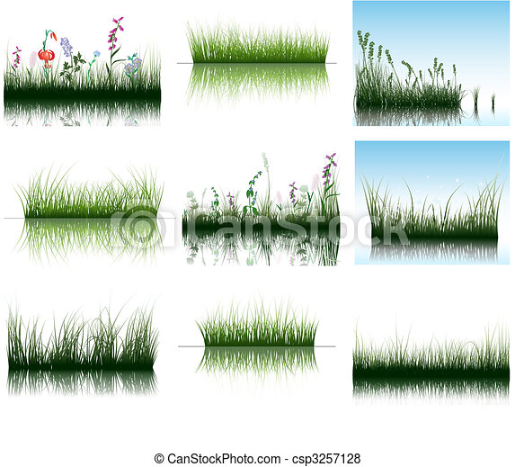 grass on water - csp3257128