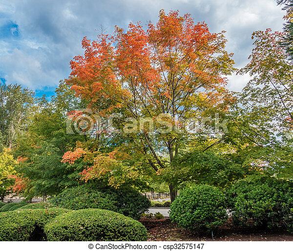 Autumn Begins - csp32575147