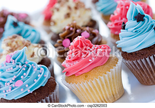 Cupcake assortment - csp3262003