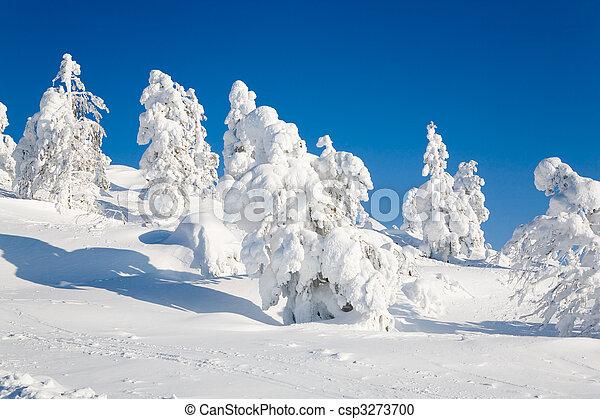 Lapland Finland - csp3273700