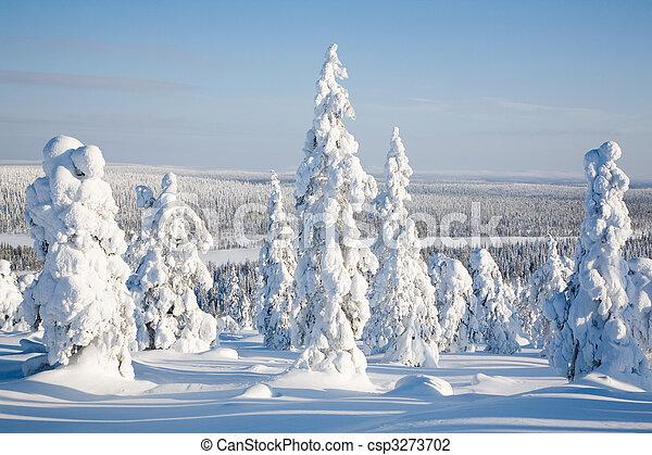 Lapland Finland - csp3273702