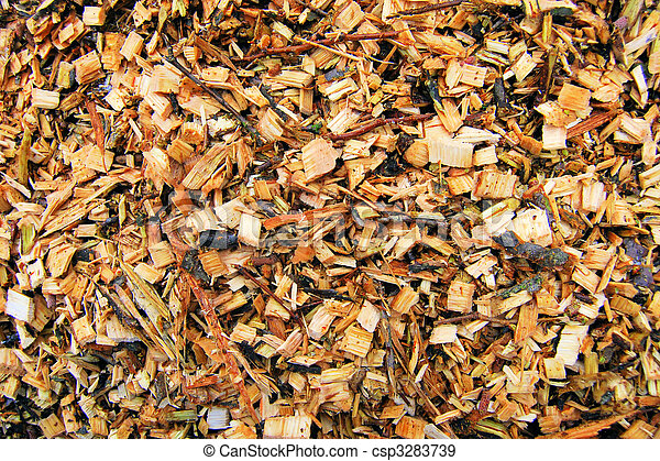 Biomass wood chips - csp3283739