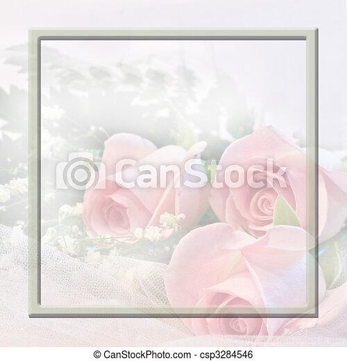 Soft Pink Roses - csp3284546