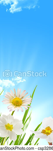 Spring flowers blue sky and sun background - csp3286079