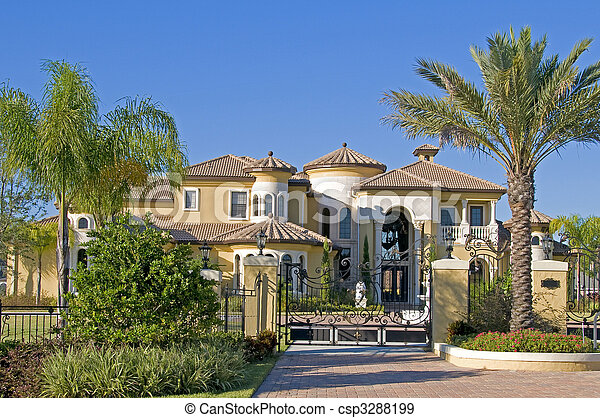 Beautiful mansion with palm trees and blue sky - csp3288199