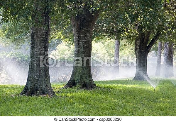 Irrigation system sparying grass and southern oak trees - csp3288230
