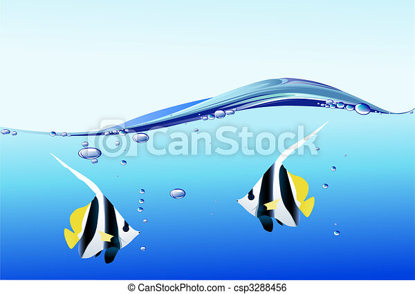 Fish  - csp3288456