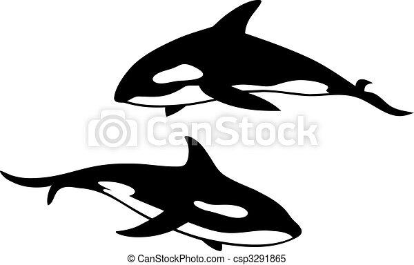 Killer whale - csp3291865