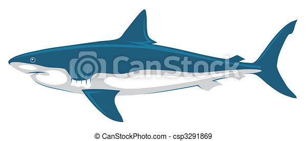 Shark - csp3291869