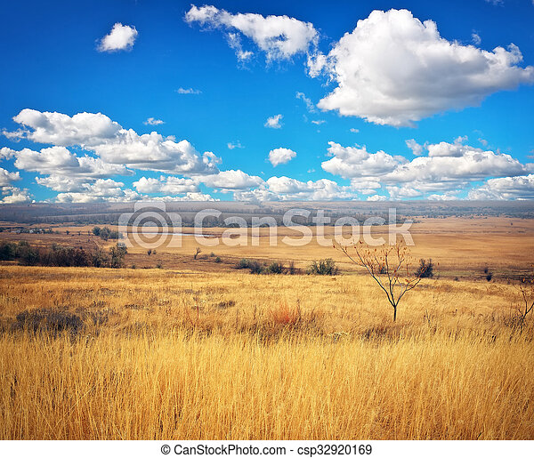 Beautiful landscape with yellow grass, river and blue cloudy sky