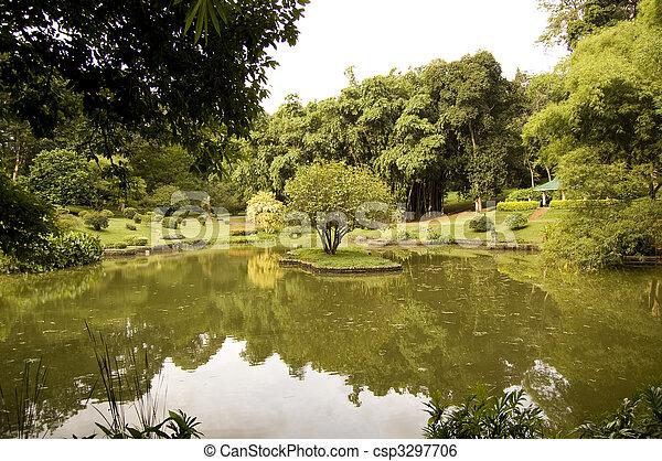 Lake in Sri Lanka in botanical garden - csp3297706
