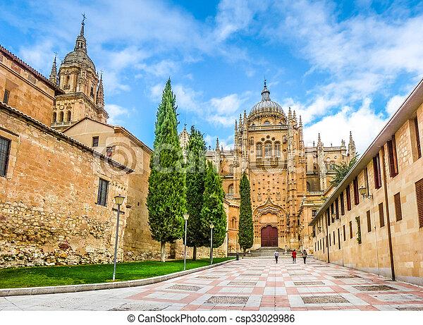 Cathedral of Salamanca, Castilla y Leon, Spain - csp33029986