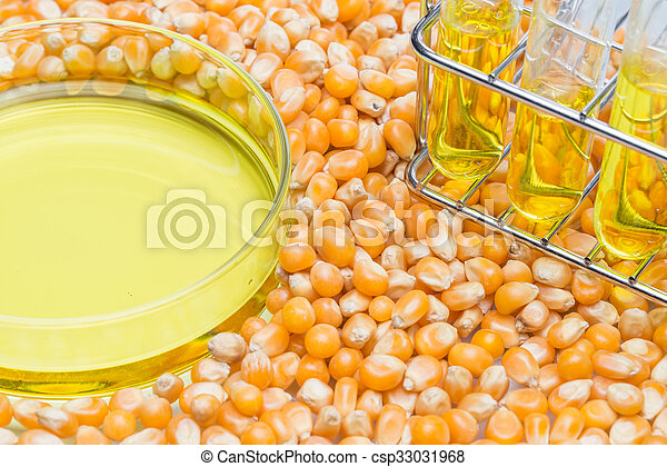 Research corn energy, biofuel and gmo in laboratory, yellow liquid in test tube