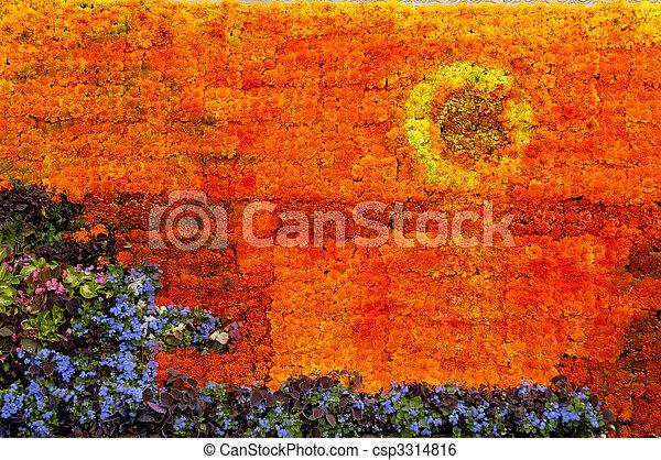 Sunset Picture Flower Arrangement - csp3314816