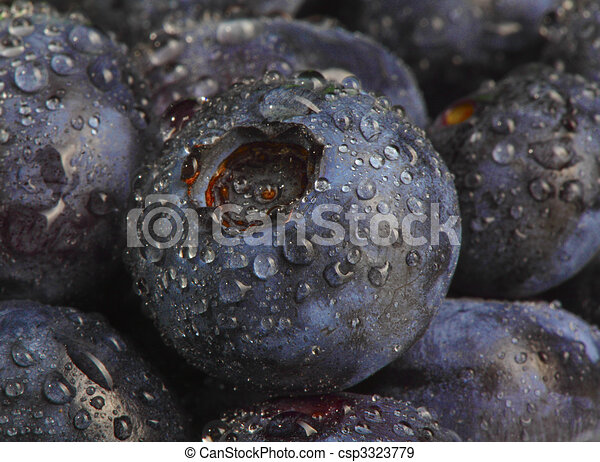 wet blueberry datail - csp3323779