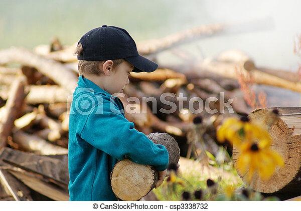 Firewood - csp3338732