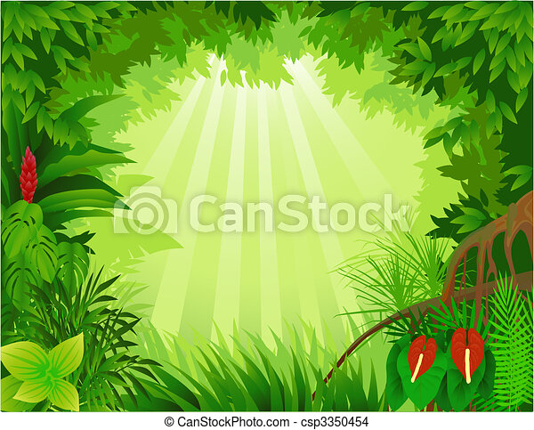 Forest background - csp3350454