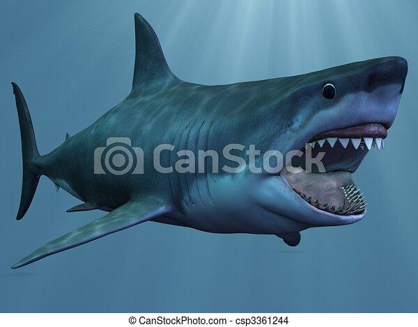Disegno di grande bianco squalo 3d render grande for Disegno squalo bianco