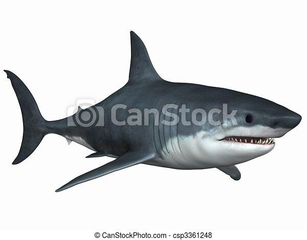 Archivio illustrazioni di grande bianco squalo 3d for Disegno squalo bianco
