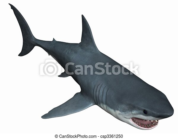 Frilled Shark Gif