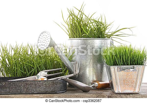 上水, 工具, 花園, 草, 罐頭 - csp3362087