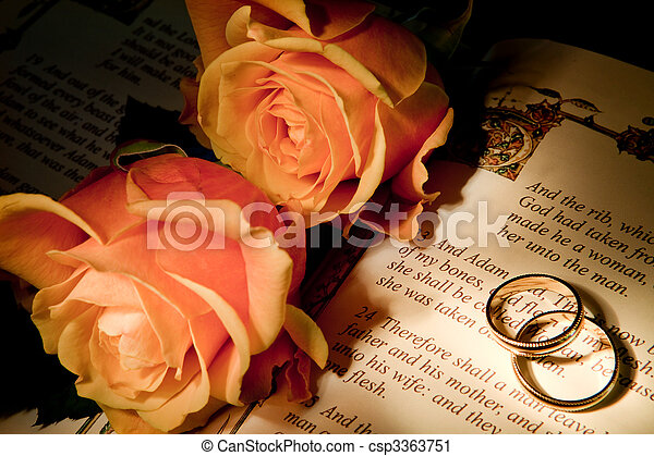 Roses and bible with Genesis text of Adam and Eve, a typical wedding text - the book illustration is copied from a 400 years old bible. - csp3363751