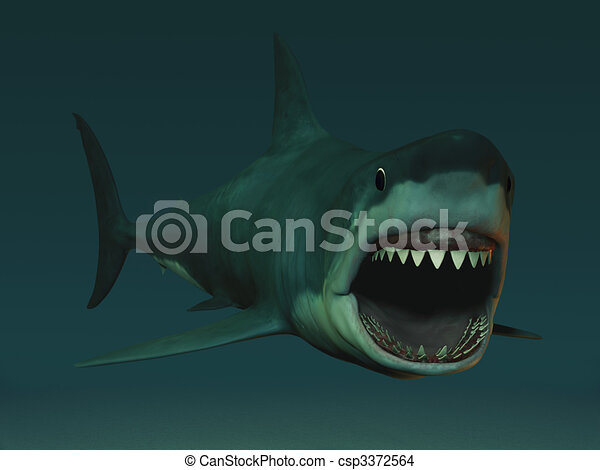 Great white shark ready to bite. - csp3372564