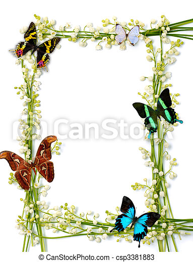 Colorful Summer Frame With Butterflies - csp3381883