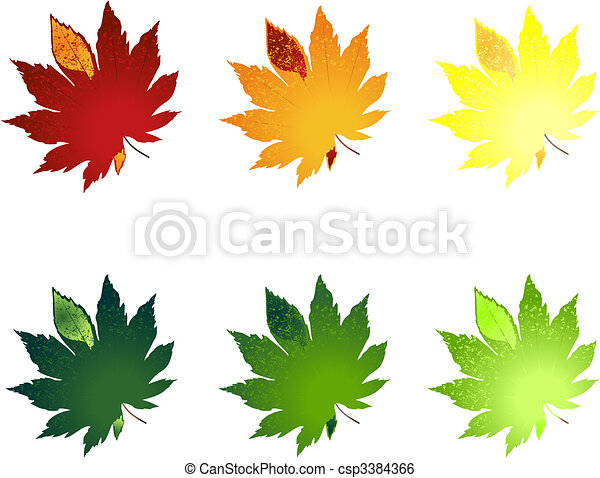 Leaf from trees of different colour. A vector illustration - csp3384366