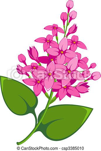 Clipart vecteur de lilas branche sur blanc eps 8 - Dessin de lilas ...