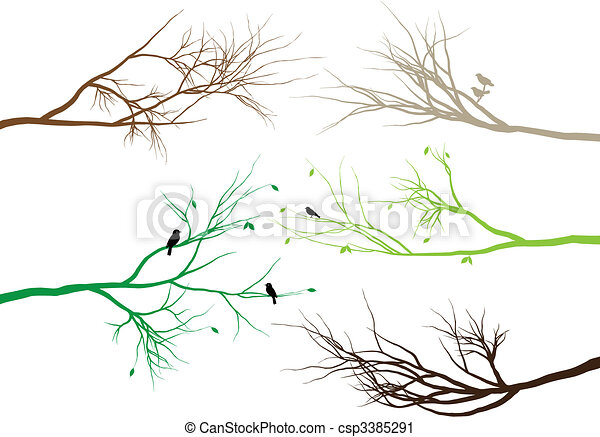 tree branches - csp3385291