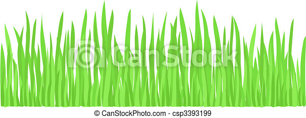 Green Grass (vector) - csp3393199