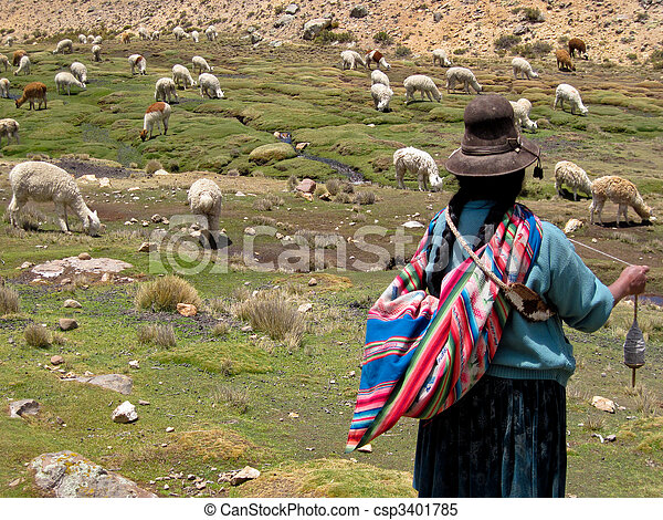 Woman with A Lama Flock in The Andes Of Peru (near By Arequipa) - csp3401785